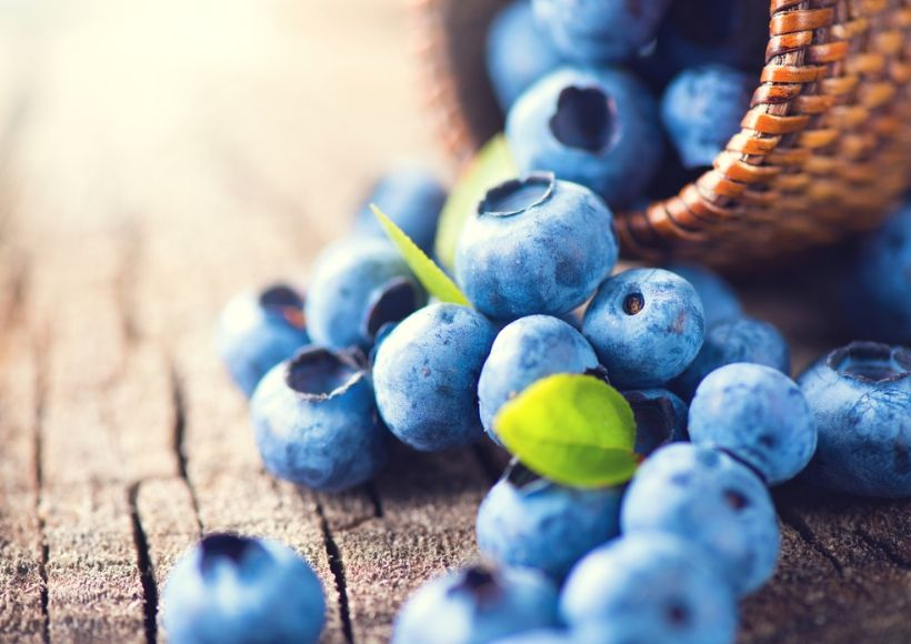Blueberry And Antioxidant